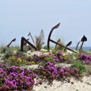 Ankerbegraafplaats in Barril Beach Tavira
