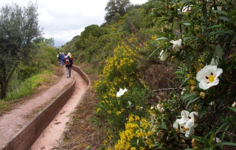 West Algarve, Wandelen in Silves